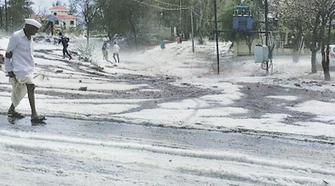 Hailstorms lashed Beed, Baramati and several other districts of Maharashtra, destroying standing crops, damaging houses and killing livestock. (IE Photo: Faiyaz Shaikh & Sandeep Daundkar)