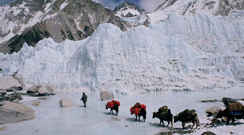 Sherpas, many of whom have scaled the summit several times as part of their job, undercut such romantic notions.