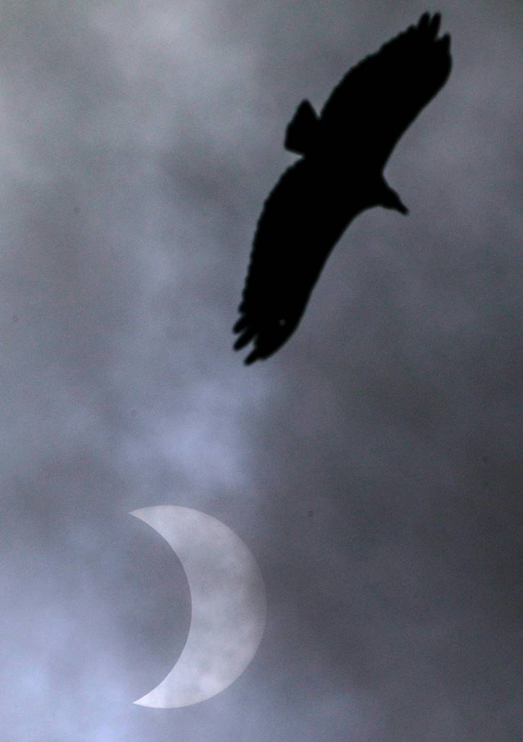 Solar Eclipse 2020: Glimpses of last solar eclipse of the year thumbnail